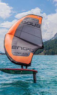 ENSIS Wing