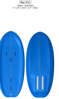 Ray 4'11» x 25″ x 4.7″ / 80 Litres